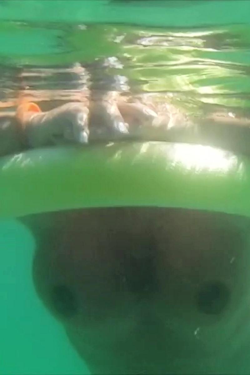 UnterwasserCam – Nackt im Meer